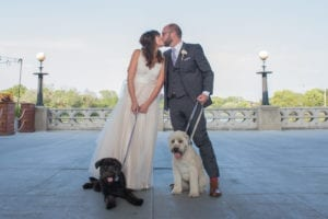 Thara Photo Chicago Wedding Photographer Autumn Wedding Dog