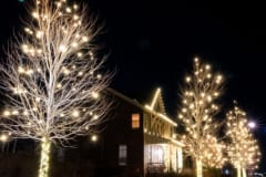 Holiday-Lights-13