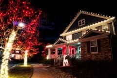 Holiday-Lights-3
