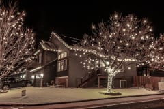 Holiday-Lights-6