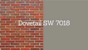dovetail paint swatch next to brick with swatch title
