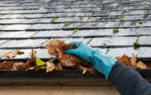 A hand cleaning out gutters by grabbing a bunch of leaves with gloves on