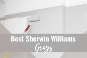 A photo of a painter rolling gray paint into a wall with title reading: Best Sherwin Williams Grays
